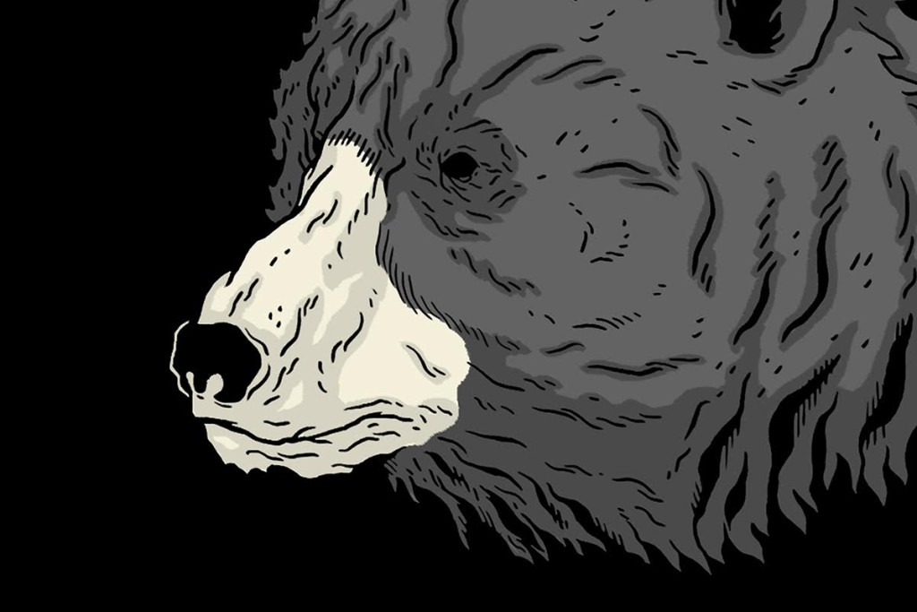 Logan Schmitt bear head illustration