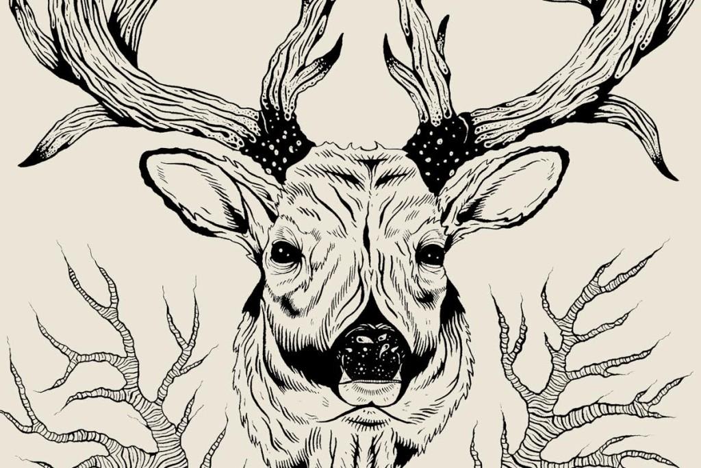 Logan Schmitt deer head illustration